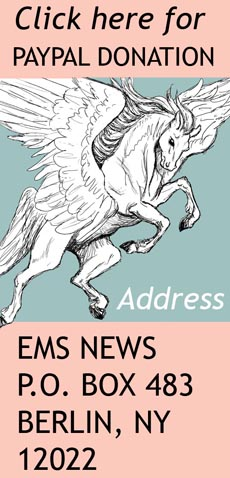 pegasus ems address pay pal
